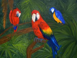Parrots by artbysherry