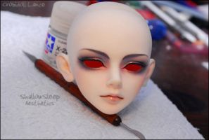 Face-up: Crobidoll Lance - 3 by asainemuri