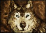 Wolf 02 by inkloose
