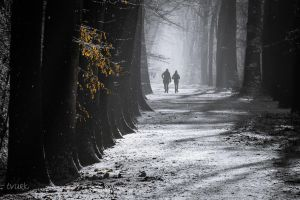 Winter Walk by tvurk