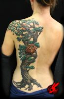 Tree Bird Owl Back Tattoo by Jackie Rabbit by jackierabbit12