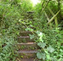 Stock - Overgrown Steps II by rockgem