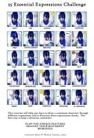 25 Essential Expressions-Kaito by AiziBlackleg