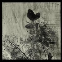 before the night III by partiallyHere