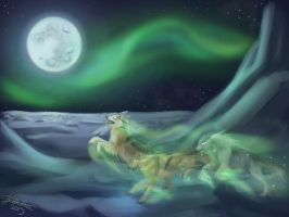 Northern Spirits by tkpanther