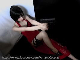 Ada Wong - Resident Evil 4 - Cosplay by LolitaAmane