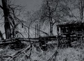Ravaged... by thewolfcreek