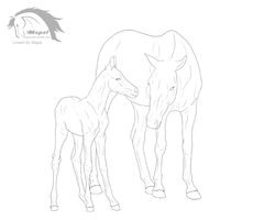 Mare and Foal Lineart HAIRLESS by mapal