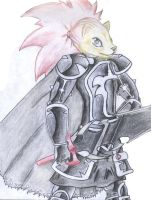 The Valtic Knight helmet-less by TheMoonMonkey
