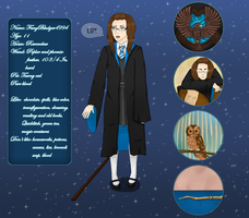Pottermore charactersheet by paraniva