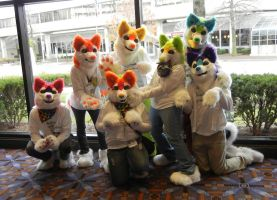 Rainbow Huskies! by DrakonicKnight