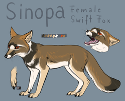 Killdeer Swift Fox Reference Sheet Commission by CorruptedFox