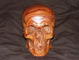 Carved wood skull in Cocobolo by WaterwalkerWoodworks
