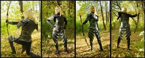 hight elves armor 1 by Shattan