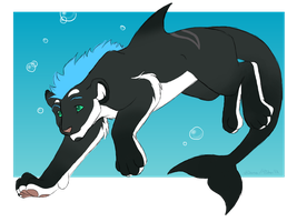 Orca -commission- by silana