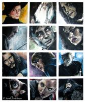 Harry Potter x12 Canvas by ScenicSarah