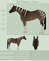 BhS Magister's Tigress by Wild-Rose-Ranch