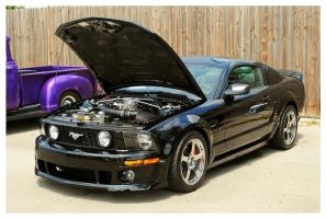 Sharp Black Mustang by TheMan268