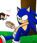 HB Sonic by Ail-ProwerTF