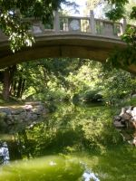 Bridge over a pond by kimmyjune