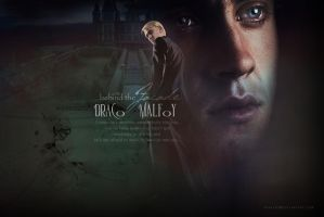 HP Wallpaper Series - Draco Malfoy by drkay85