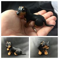 Dachshund by LittleCLUUs