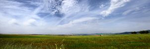 Campo de Trigo Panoramica by SuperStar-Stock