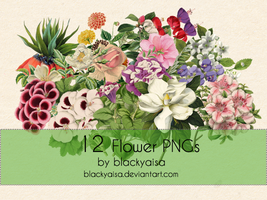 Flower PNGs: 13 by blackyaisa