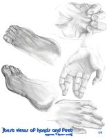 Drawing Bootcamp:  5 views by ezranay