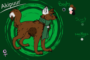 Akipuur Reference by Akipuur