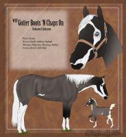 WBF Gotter Boots 'N Chaps On by Rising-High-Ranch