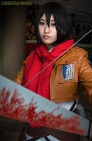 Shingeki No Kyojin (I) by Fenestra-Works