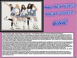 Hail New Korea:Their future is PINK! by p-l-richards