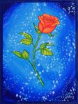 Mother's Rose Maritta by flaming-trout