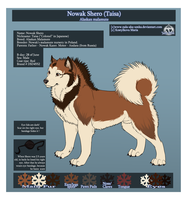 Taisa ref-sheet by NaLa-aka-Umka