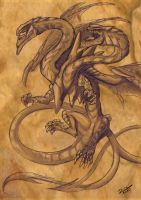 Two headed dragon Dragh  Gonh by Raphtil