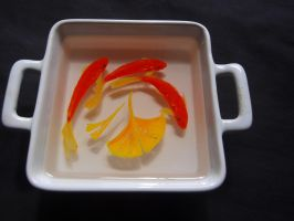 goldfish 3d art by goldfishinspiration
