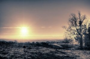 Winter Morning - Gradient Mapped by Spyder-art