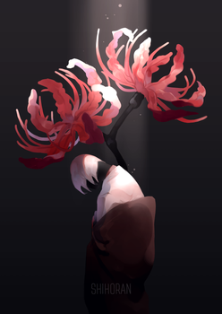 Spider Lily by shihoran