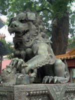 Foo dog by FameWolf