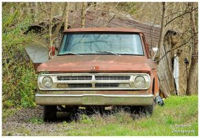 A Rusty Old Dodge Truck In The Weeds by TheMan268
