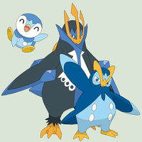 Pokemon Base 34~Piplup Evolution~ by Xbox-DS-Gameboy