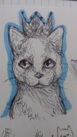Black Ballpoint Pen Cat by NesLeeTheKiller