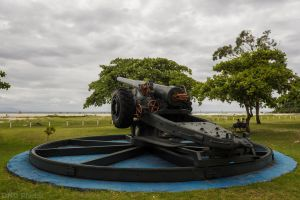 Cannon by DNDBlog