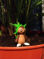 Chespin by MysticWolvesHowl