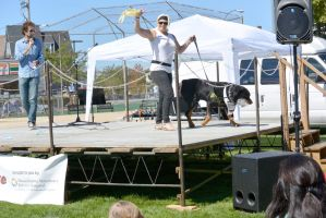 2014 Dog Festival, Best Trick Contest 4 by Miss-Tbones