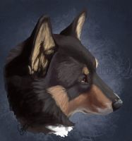 Mindy - Pet Portrait by InstantCoyote
