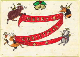 Holiday Card Project 2 by Siobhan68