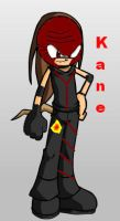 Kane Sonic Style by sonamy-666