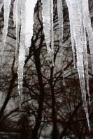 Icicles 2 by pyrokitty19283